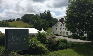 image: Mill End Hotel live wedding music